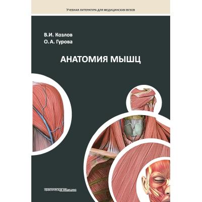 Анатомия мышц. Рекомендовано Координационным советом