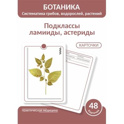 Ботаника. Систематика грибов, водорослей, растений. Подклассы ламииды, астериды. КАРТОЧКИ (48 шт).