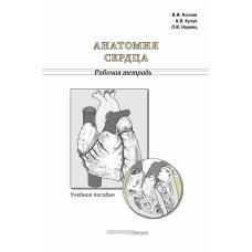 Анатомия сердца. Рабочая тетрадь