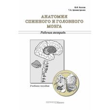 Анатомия спинного и головного мозга. Рабочая тетрадь