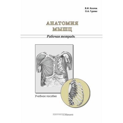 Анатомия мышц. Рабочая тетрадь